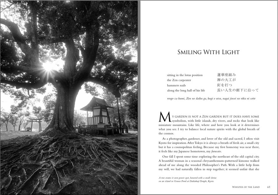 book smiling light PDF